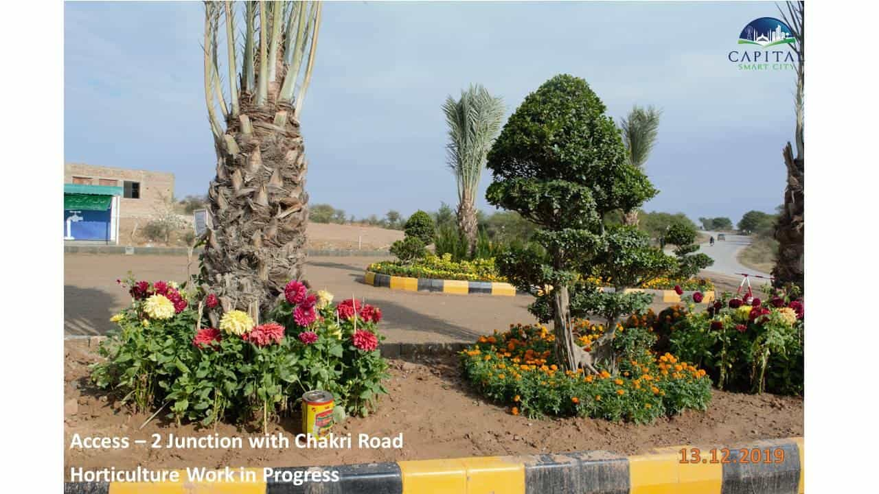 Capital Smart City Islamabad Recent Updates Access 2 Junction with Chakri Road and Horticulture Work in Progress Flowers and Date Palm Trees on roadside